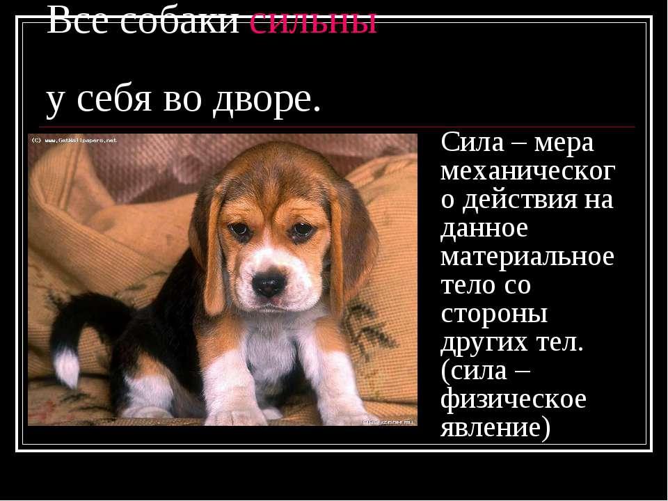 Все собаки сильны у себя во дворе. Сила – мера механического действия на данн...