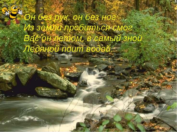 Он без рук, он без ног Из земли пробиться смог Вас он летом, в самый зной Лед...
