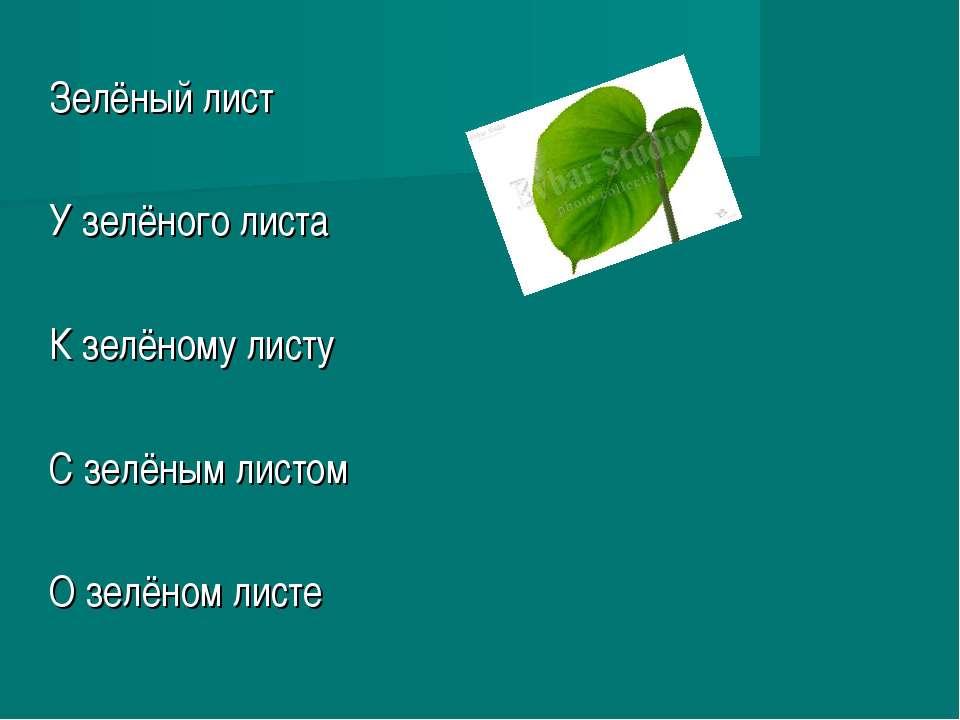 Зелёный лист У зелёного листа К зелёному листу С зелёным листом О зелёном листе