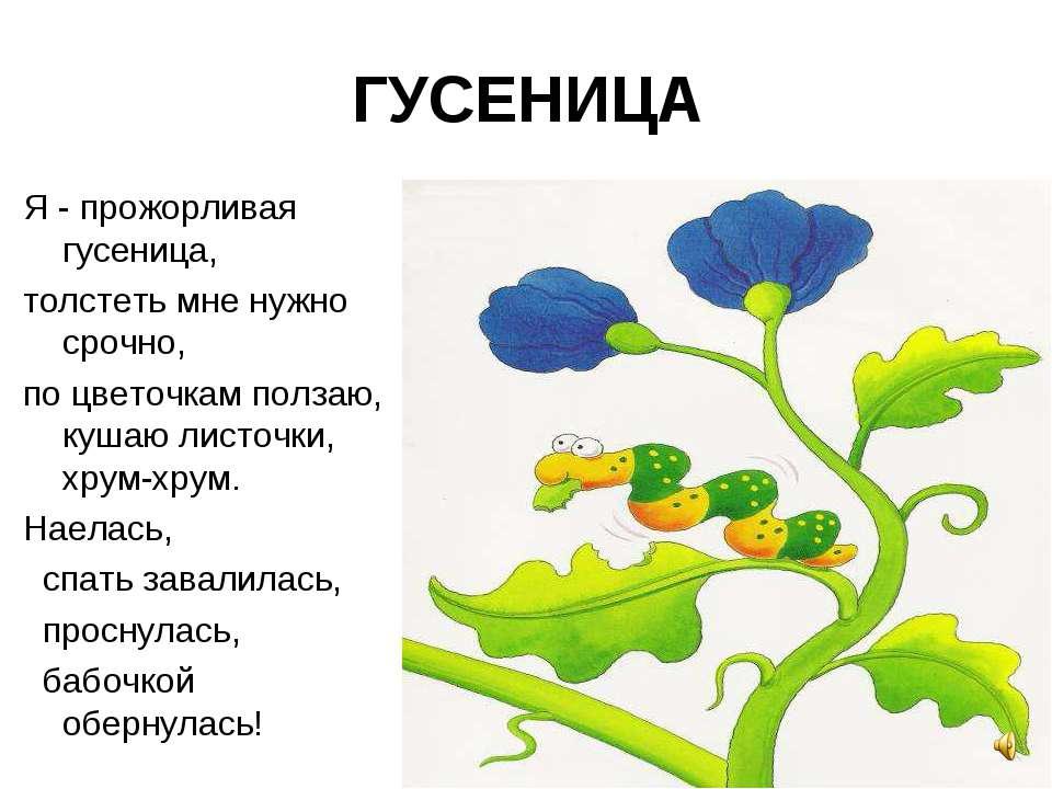 ГУСЕНИЦА Я - прожорливая гусеница, толстеть мне нужно срочно, по цветочкам по...