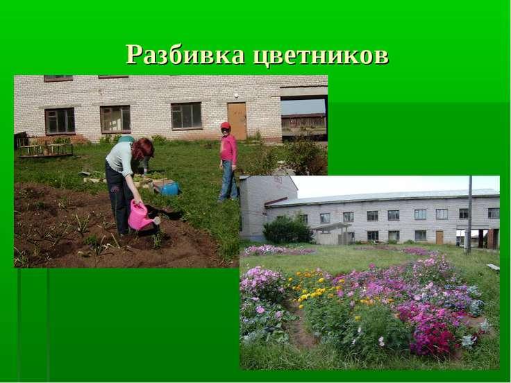 Разбивка цветников