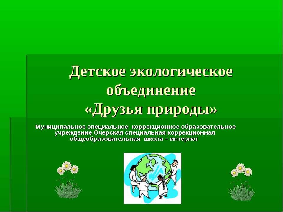Детское экологическое объединение «Друзья природы» Муниципальное специальное ...