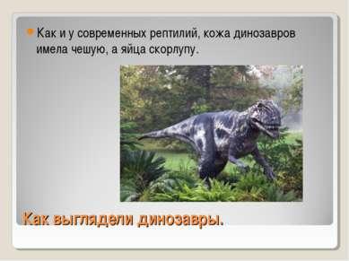 Как выглядели динозавры. Как и у современных рептилий, кожа динозавров имела ...