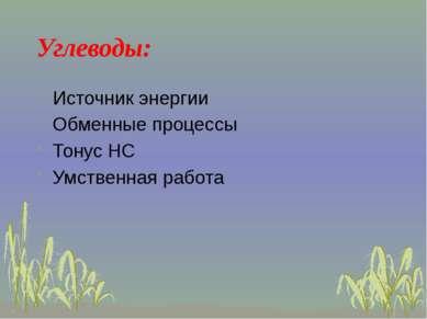 Углеводы: Источник энергии Обменные процессы Тонус НС Умственная работа