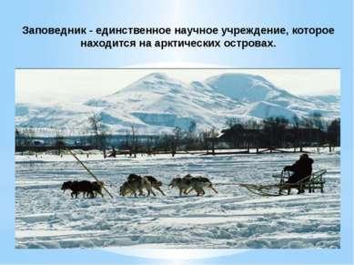 Заповедник - единственное научное учреждение, которое находится на арктически...
