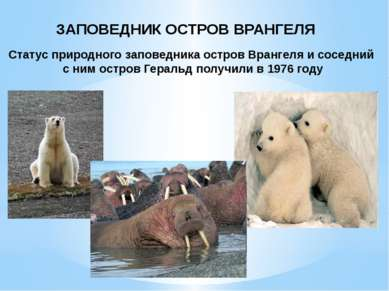 ЗАПОВЕДНИК ОСТРОВ ВРАНГЕЛЯ Статус природного заповедника остров Врангеля и со...