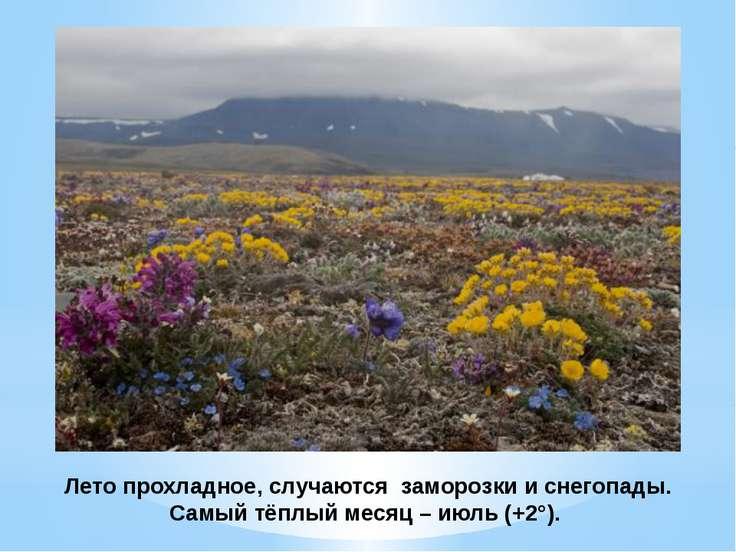 Лето прохладное, случаются заморозки и снегопады. Самый тёплый месяц – июль (...
