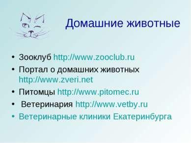 Домашние животные Зооклуб http://www.zooclub.ru Портал о домашних животных ht...