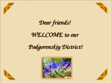Dear friends! WELCOME to our Podgorenskiy District!