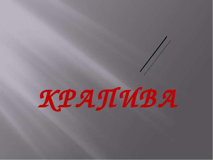 КРАПИВА