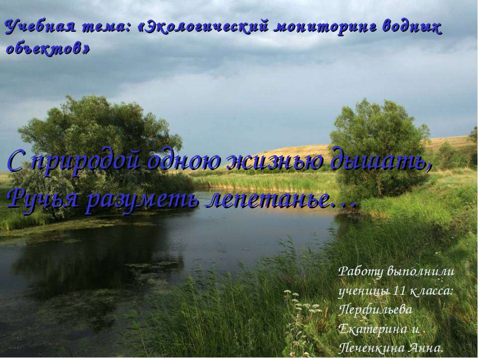 Работу выполнили ученицы 11 класса: Перфильева Екатерина и Печенкина Анна. С ...