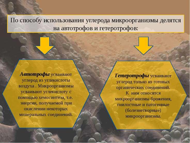 По способу использования углерода микроорганизмы делятся на автотрофов и гете...