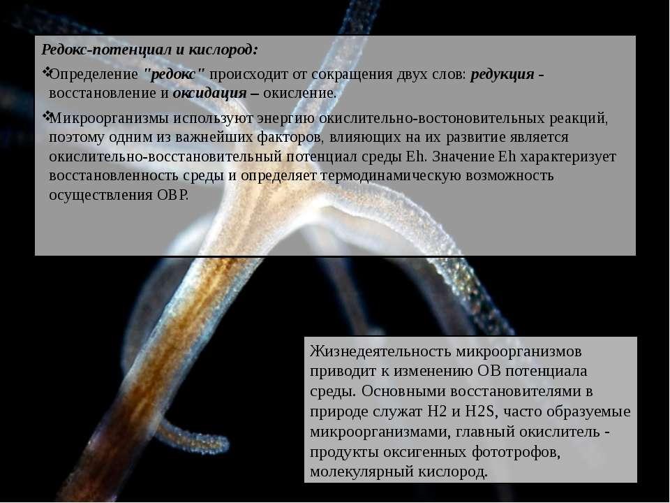 """Редокс-потенциал и кислород: Определение """"редокс"""" происходит от сокращения дв..."""
