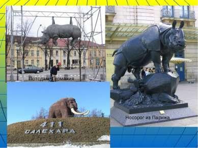 Потсдам, Германия Носорог из Парижа
