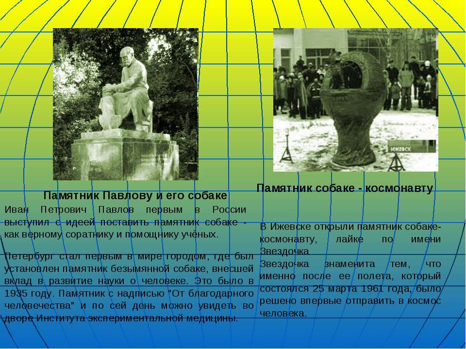 Памятник Павлову и его собаке Иван Петрович Павлов первым в России выступил с...