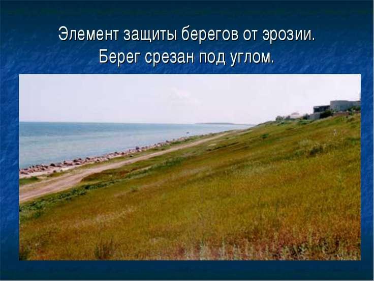 Элемент защиты берегов от эрозии. Берег срезан под углом.