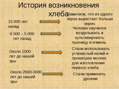 История возникновения хлеба 15 000 лет назад Заметили, что из одного зерна вы...