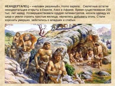 НЕАНДЕРТАЛЕЦ – «человек разумный», Homo sapiens . Скелетные остатки неандерта...
