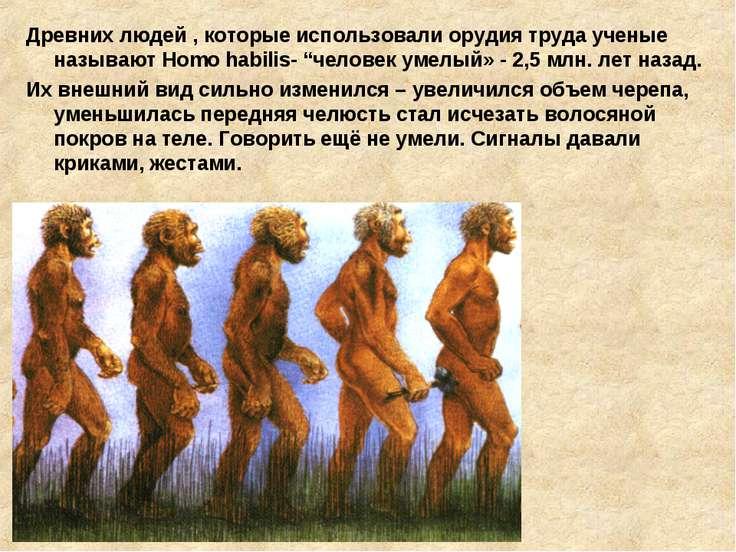 Древних людей , которые использовали орудия труда ученые называют Homo habili...