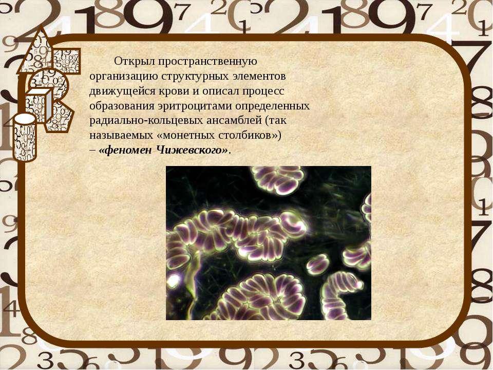 Открыл пространственную организацию структурных элементов движущейся крови и ...