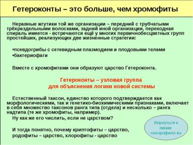 Гетероконты – это больше, чем хромофиты Неравные жгутики той же организации –...