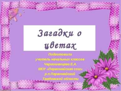 Загадки о цветах Подготовила учитель начальных классов Чермошенцева Е.А. МОУ ...