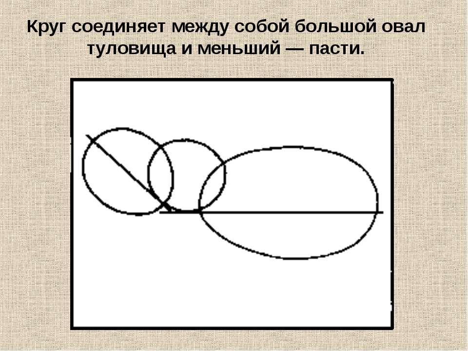 Круг соединяет между собой большой овал туловища и меньший — пасти.