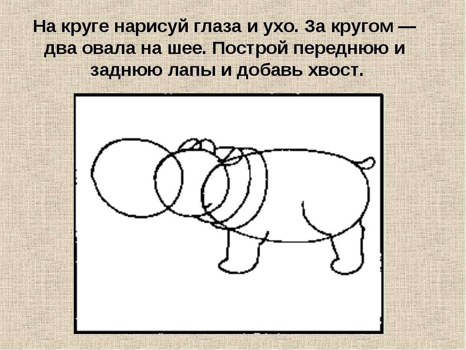 На круге нарисуй глаза и ухо. За кругом — два овала на шее. Построй переднюю ...