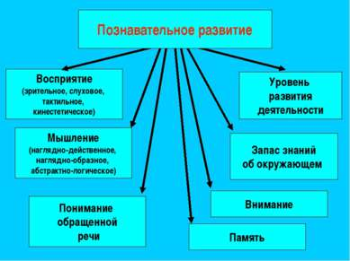 Восприятие (зрительное, слуховое, тактильное, кинестетическое) Запас знаний о...