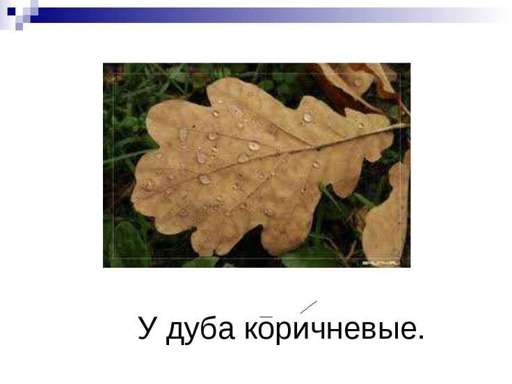 У дуба коричневые.