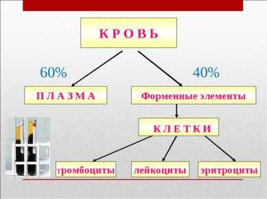 К Р О В Ь П Л А З М А лейкоциты Тромбоциты эритроциты Форменные элементы 60% 40%
