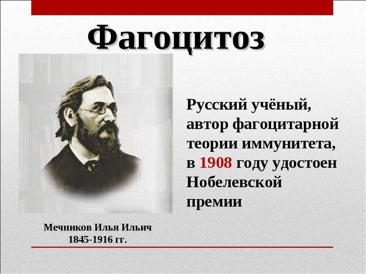 Фагоцитоз Мечников Илья Ильич 1845-1916 гг. Русский учёный, автор фагоцитарно...
