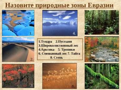 Назовите природные зоны Евразии 1.Тундра 2.Пустыня 3.Широколиственный лес 4.А...