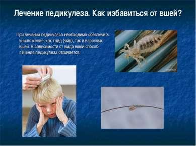 Лечение педикулеза. Как избавиться от вшей? При лечении педикулеза необходимо...