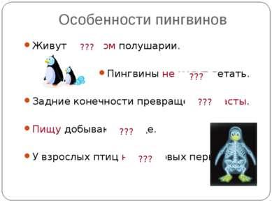 Особенности пингвинов Живут в южном полушарии. Пингвины не могут летать. Задн...