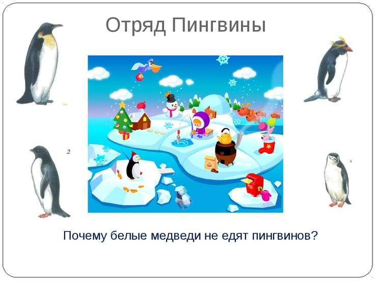Отряд Пингвины Почему белые медведи не едят пингвинов? Пингвины живут только ...
