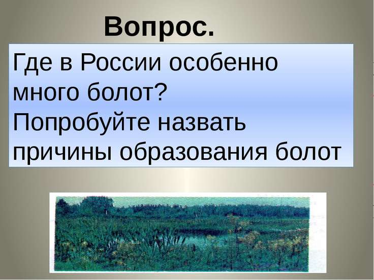 Вопрос. Где в России особенно много болот? Попробуйте назвать причины образов...