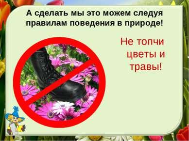 А сделать мы это можем следуя правилам поведения в природе! Не топчи цветы и ...
