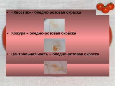 «Хвостик» - бледно-розовая окраска Кожура – бледно-розовая окраска Центральна...
