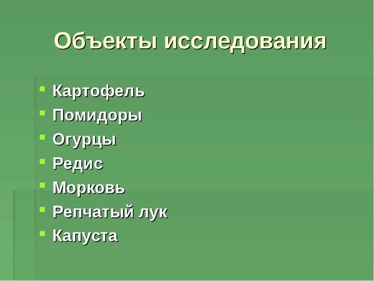 Объекты исследования Картофель Помидоры Огурцы Редис Морковь Репчатый лук Кап...