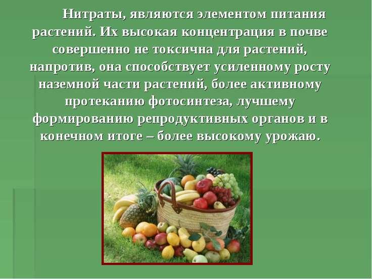 Нитраты, являются элементом питания растений. Их высокая концентрация в почве...