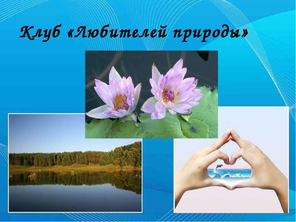 Клуб «Любителей природы»