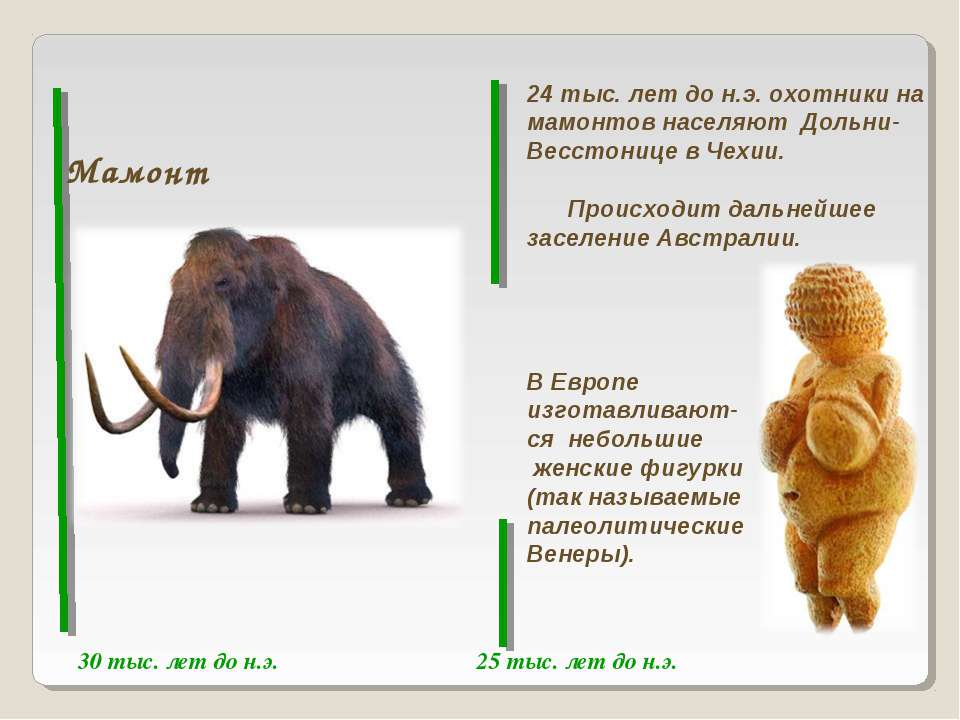30 тыс. лет до н.э. 25 тыс. лет до н.э. Мамонт 24 тыс. лет до н.э. охотники н...