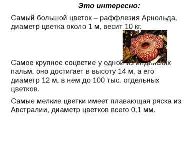 Это интересно: Самый большой цветок – раффлезия Арнольда, диаметр цветка окол...