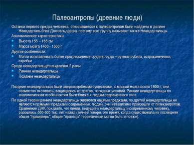 Палеоантропы (древние люди) Останки первого предка человека, относившегося к ...