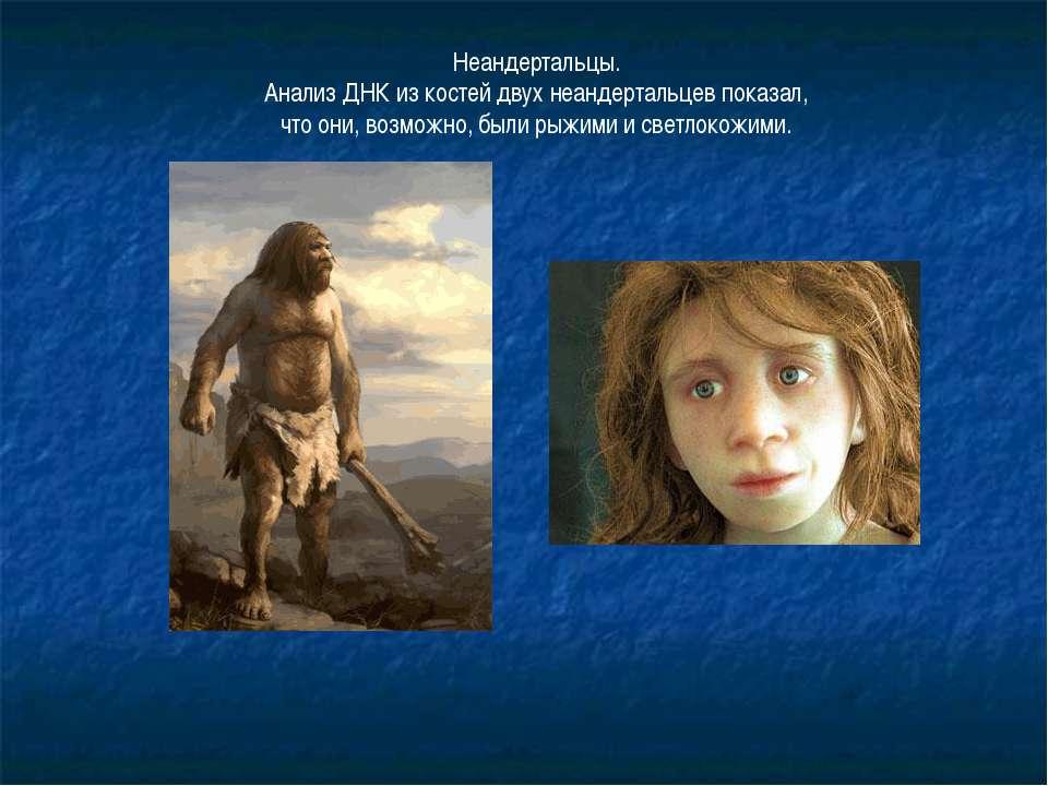 Неандертальцы. Анализ ДНК из костей двух неандертальцев показал, что они, воз...