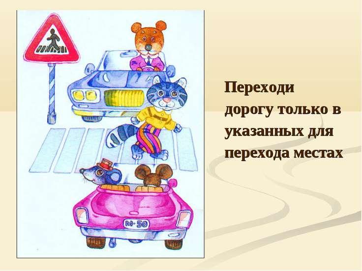 Переходи дорогу только в указанных для перехода местах
