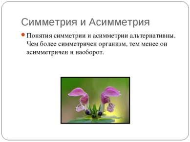 Симметрия и Асимметрия Понятия симметрии и асимметрии альтернативны. Чем боле...