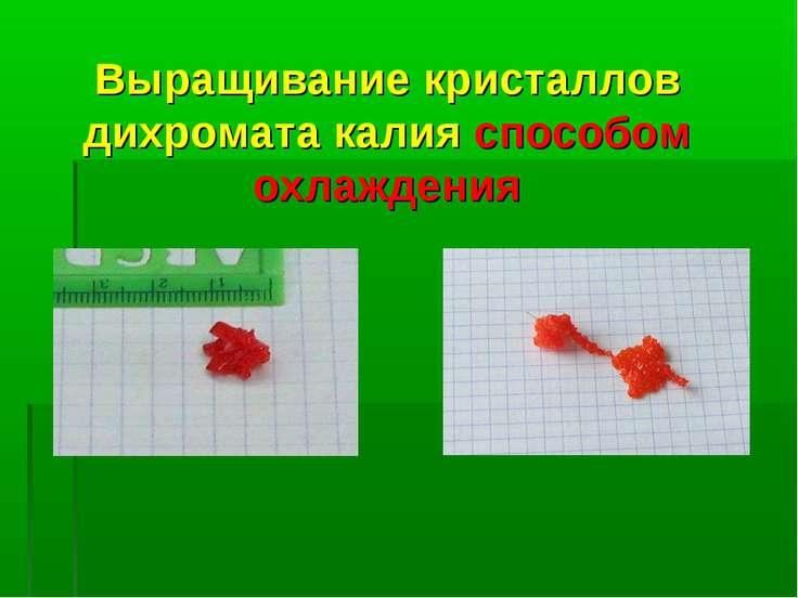 Выращивание кристаллов дихромата калия способом охлаждения
