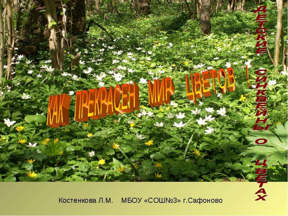 Костенкова Л.М. МБОУ «СОШ№3» г.Сафоново
